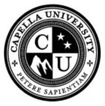 Capella Mba Reviews by Top 20 Master S Of Business Administration Degrees