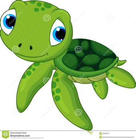 turtles clipart baby sea turtle pencil and in
