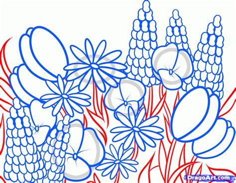 How To Draw A Garden With Flowers How To Draw Wildflowers Step By Step Flowers Pop Culture Free Drawing Tutorial Added