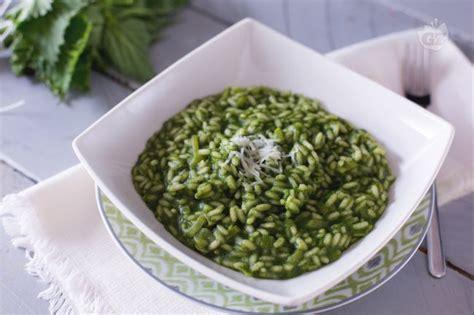 cucinare le ortiche ricetta risotto alle ortiche la ricetta di giallozafferano