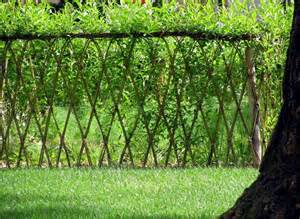 23 amazing exles of living willow fences home design