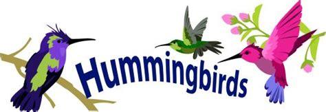 vital l spectrum light for birds hummingbird eyesight and coloration ask a biologist