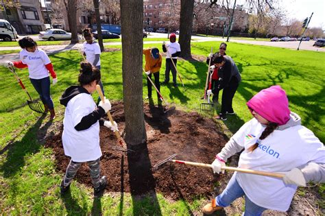 local parks opportunities and challenges in working with volunteers in local parks the nature