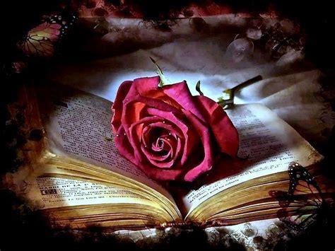 libro old roses il segno delle idee 187 blog archive ci salveremo insieme il segno delle idee