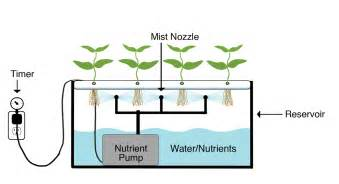 Indoor Mushroom Garden - aeroponics grow systems
