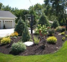 1000 images about berms on pinterest gardens shade plants and the