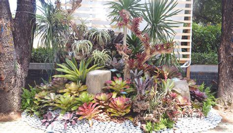 garden plants flowers philippines 4k wallpapers