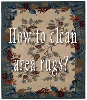 How To Clean An Area Rug Yourself Diy Do It Yourself Home Improvement Hobbies Garden