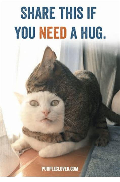 Meme Hug - 25 best memes about you need a hug you need a hug memes