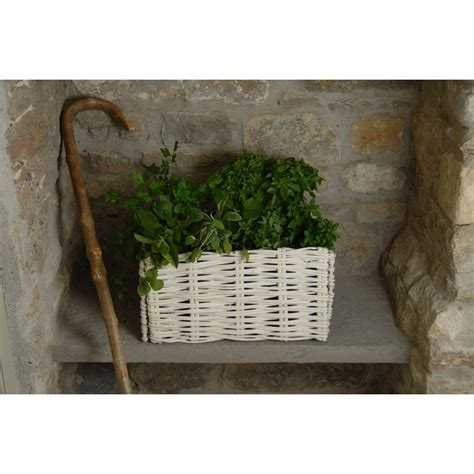 Wicker Basket Planters by Buy Burgon White Wicker Herb Planter From The