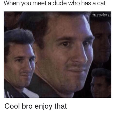 Bro You Met In Detox Meme by When You Meet A Dude Who Has A Cat Drgrayfang Cool Bro