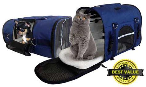 best carrier backpack top 10 best pet carrier backpacks reviews in 2018