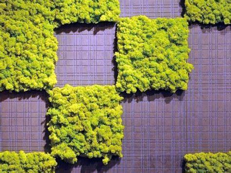 create an interior vertical garden with moss tiles