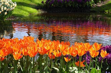 imagenes de jardines impresionantes los jardines m 225 s impresionantes del mundo taringa