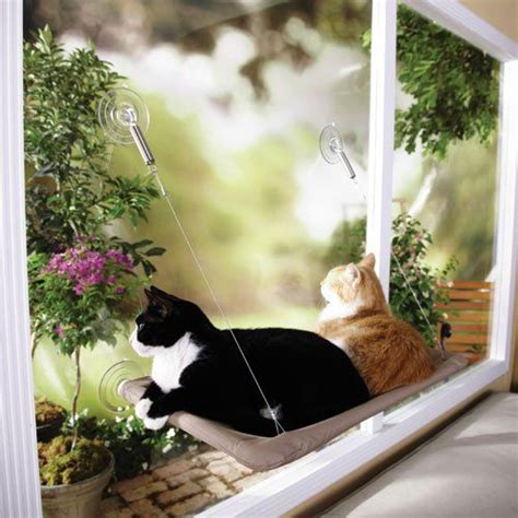 window cat bed sunny seat window cat bed 13 99 gatti pinterest