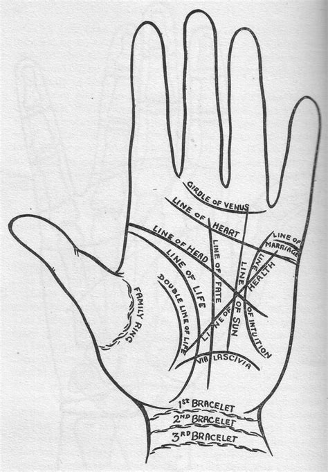 divination palmistry analyzing the mounts the major lines what do they the contains 6