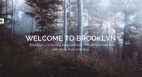 themes in the book brooklyn the 10 most popular wordpress themes of 2017