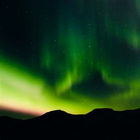 hurtigruten excursions northern lights 10 tips on how to photograph the northern lights