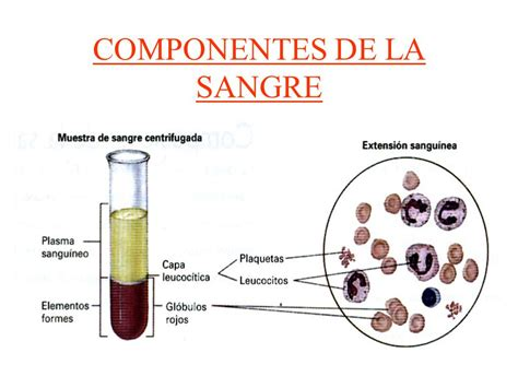blood gases pictures posters news and videos on your pursuit hobbies interests and worries