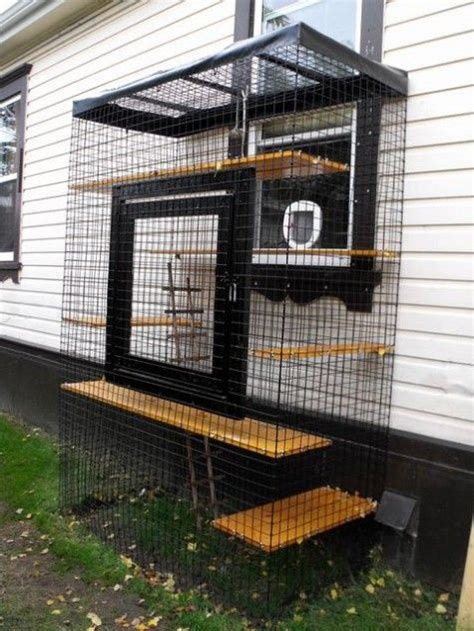 cat patio 25 best ideas about outdoor cat enclosure on pinterest