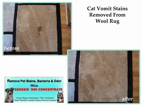 how to clean cat vomit from rug best carpet cleaner and stain remover genesis 950 the best household green all purpose cleaner
