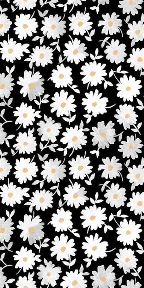 daisy pattern hd print pattern modern floral monochrome design daisy