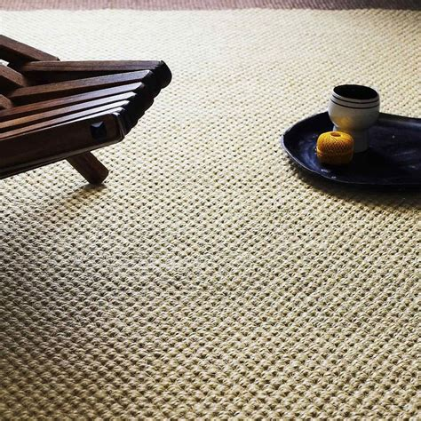 Carpet That Looks Like Sisal   Carpet Vidalondon