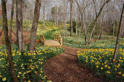 Gibbs Gardens by New 300 Acre Estate Garden Opening In March 2012 In