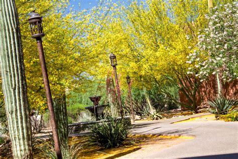 Campus Tour Sierra Tucson