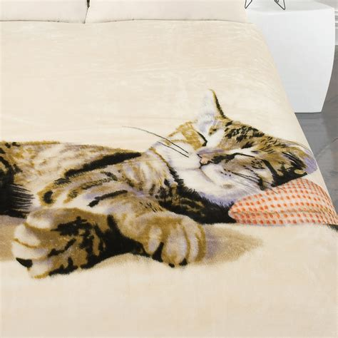 Kitten Bedding Set Kitten Duvet Cover With Pillow Bedding Set Blanket Throw Cushion Cat Gift Ebay