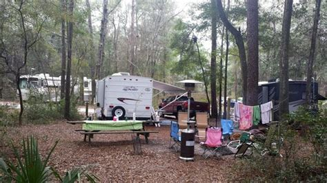 Suwannee River State Park Cabins by Csite 15 Semi Secluded Picture Of Suwannee River