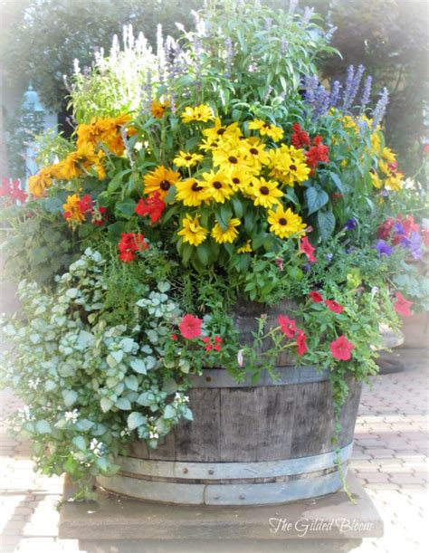 garden flower containers summer container gardening the gilded bloom