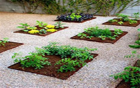Fruit And Vegetable Garden Layout Vegetable And Fruit Garden Plans Www Imgkid The