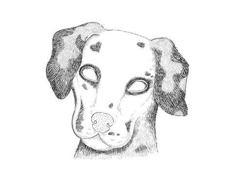 how to a dalmatian how to draw a dalmatian themekeeper