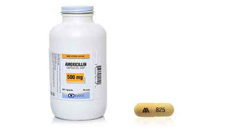 side effects of amoxicillin in dogs amoxicillin for dogs side effects isotretinoin accutane 174
