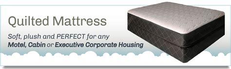 best mattresses in minneapolis st paul martin mattress