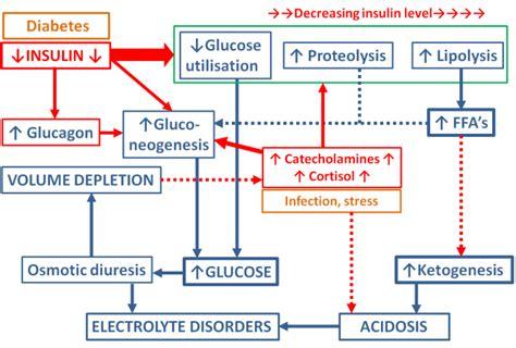 dehydration ketones diabetic ketoacidosis and hyperglycaemic hyperosmolar