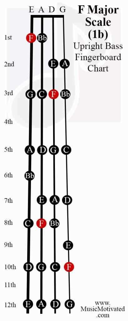 11th Chords Guitar