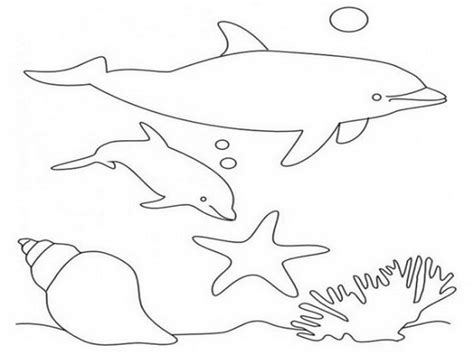 coloring pages of winter and hope winter the dolphin free coloring pages