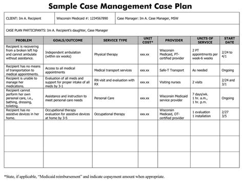 social work case plan template plan template