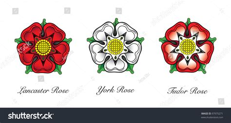 house of rose english rose emblems following war roses stock vector