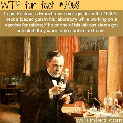 louis pasteur facts 17 best images about laboratory humor on pinterest funny