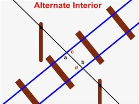 Interior Angles In Real by Alternate Interior Angles
