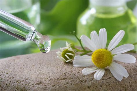 fiori di bach per lutto cosa sono i fiori di bach risponde il dottor marco