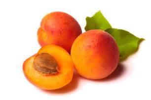 Apricots prunus armeniaca