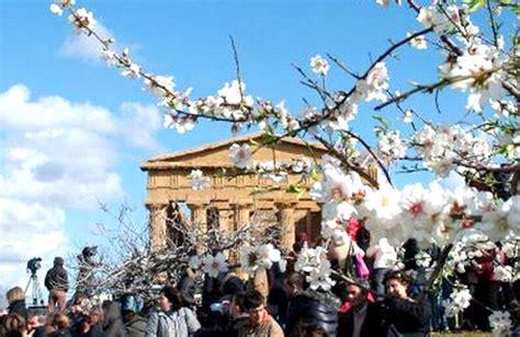 la sagra mandorlo in fiore la sagra mandorlo in fiore un simbolo di gioia pace