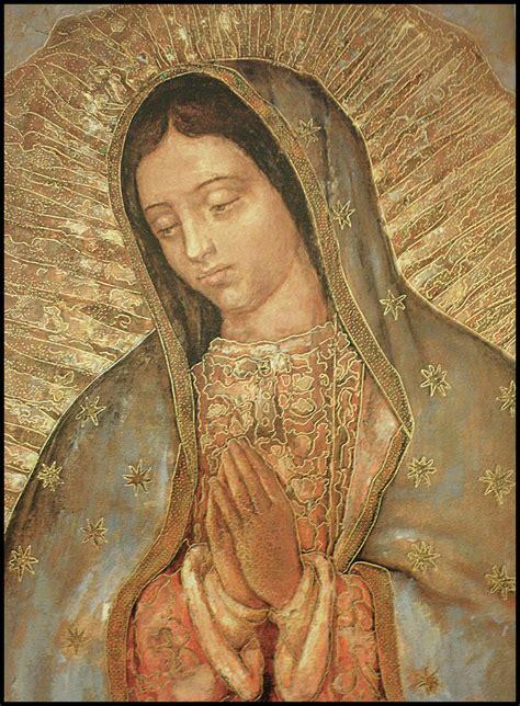 imagenes de la virgen de guadalupe navideñas virgen de guadalupe una imagen viva historicidad la