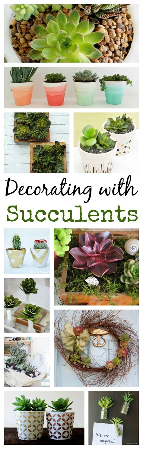 13 ideas for decorating with succulents town country