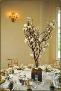 decorative branches for vases home design ideas