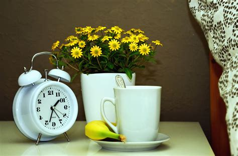 picture pot flower clock  life mug tea